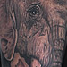 Tattoos - Africa's Big 5 - 67255