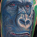 Tattoos - Gorilla Tattoo - 69616
