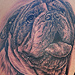 Tattoos - Bulldog  - 47939