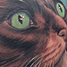 Tattoos - Cat Tattoos - 82662