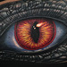 Reptilian Human Eye Tattoo Tattoo Design Thumbnail