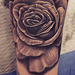 Black and Gray Roses Tattoo Design Thumbnail