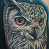 Eurasian Eagle-Owl  Tattoo Design Thumbnail