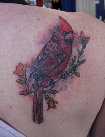 Tattoos - redbird - 46447