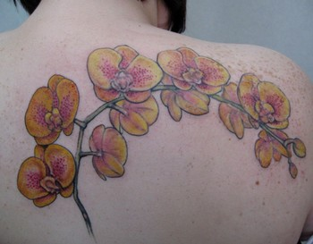 Tattoos - yellow orchids - 46446