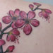 Tattoos - blossoms - 31047