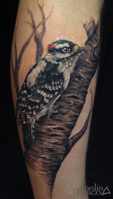 Tattoos - woodpecker on birch - 101455