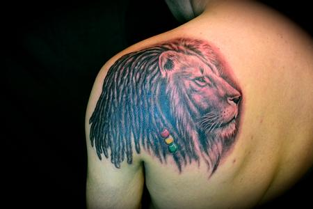 Rasta Lion With Dreads Lion of judah with dreads and