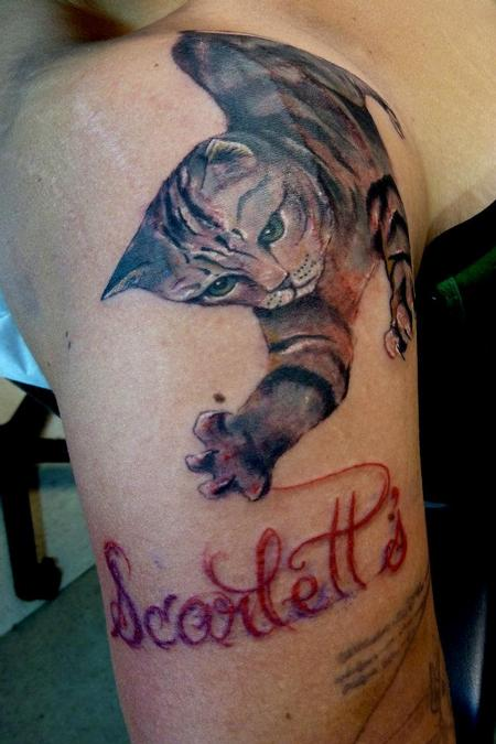 Tattoos - Cat scratching name - 64100