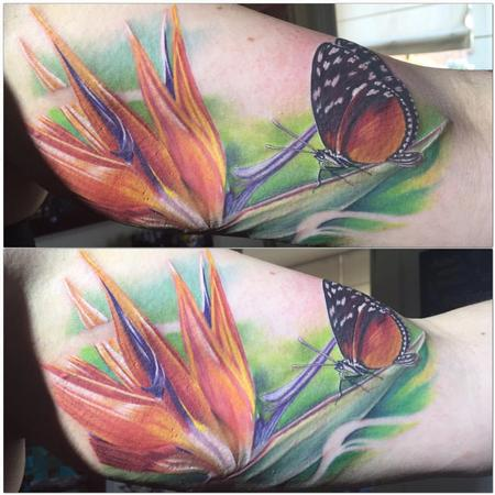 Tattoos - Realistic Bird of paradise flower and butterfly in color - 117225