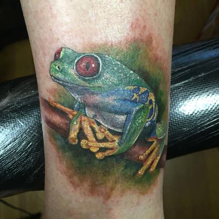 Tree frog in color