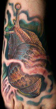 Tattoos - Snail Foot Tattoo - 32373