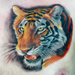 Tattoos - Photorealistic Tiger - 22357