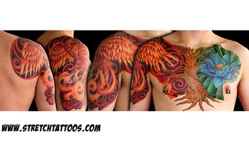 Tattoos - Phoenix, Tree and Lotus flower Chest and half sleeve - 43857