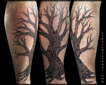 Tattoos - Tree on Leg - 48959