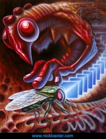 Nick Baxter - Metamorphosis