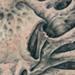 Tattoos - Raven Skull Bonescape - 45367