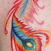 Tattoos - Phoenix Feather - 72863