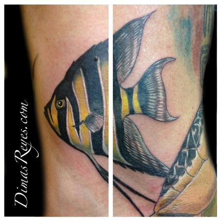Dimas Reyes - Color Angelfish tattoo