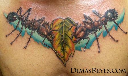 Dimas Reyes - Color Realistic Leafcutter Ants and Leaf Tattoo