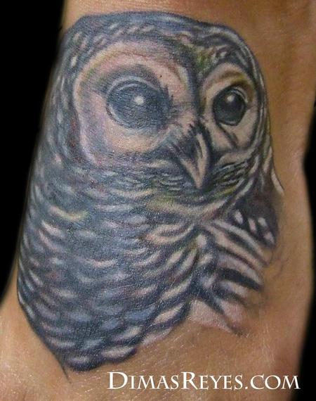 Dimas Reyes - Full Color Realistic Owl Tattoo