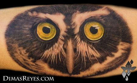 Dimas Reyes - Spectacled Owl Tattoo