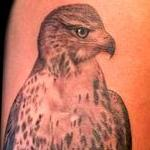 Tattoos - Realistic Red Tailed Hawk Tattoo - 119318
