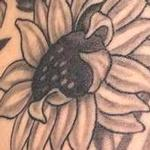 Tattoos - Black and Grey Wild Flowers Tattoo - 117844