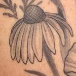 Tattoos - Black and Grey Wild Flowers Tattoo - 117843