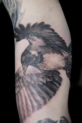 Black and grey bird in flight Tattoo Design Thumbnail