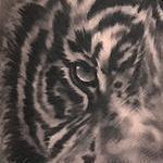 Tiger Morph Tattoo Tattoo Design Thumbnail