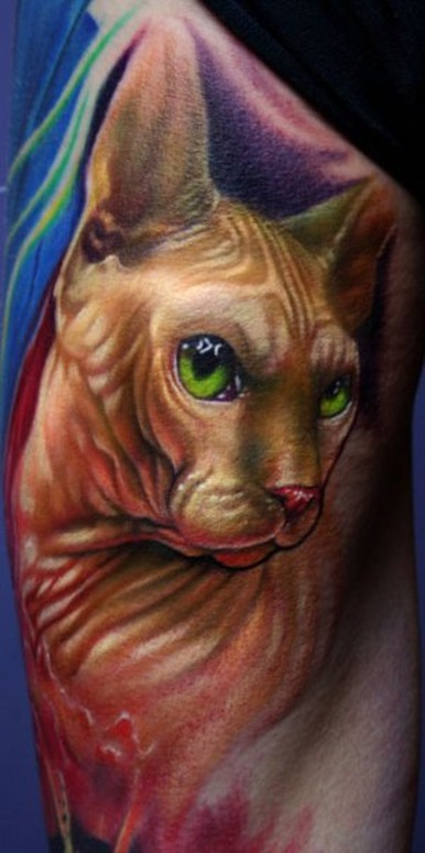 hairless cat tattoo by paul acker tattoonow