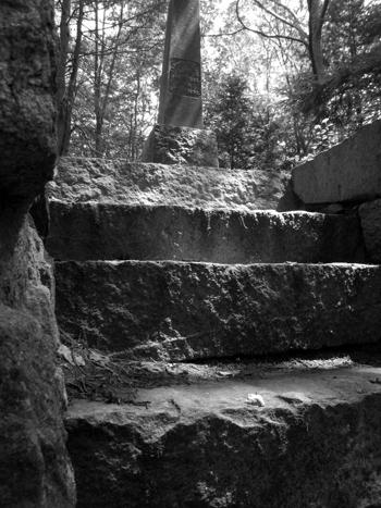 - steps