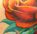 Tattoos - hello roses - 44185