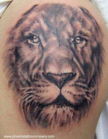 Eric James - Realistic Lion Tattoo in black and gray
