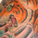 Tattoos - Turning Tiger - 15114