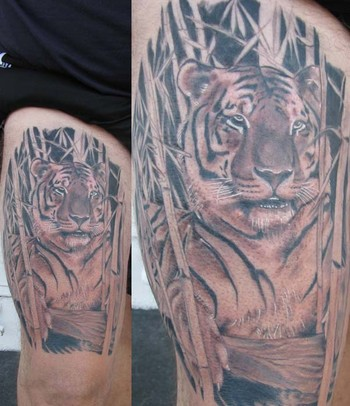 Tigers In Bamboo Tattoos Related Keywords Suggestions Tigers In