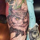 Great horned owl Tattoo Design Thumbnail