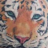 Tattoos - Tiger - 69933