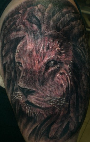 Lion with dreads tattoo drawings - photo#10
