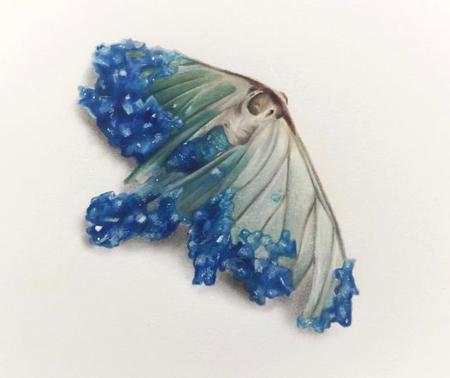 Haylie Erin - Crystallized Moth