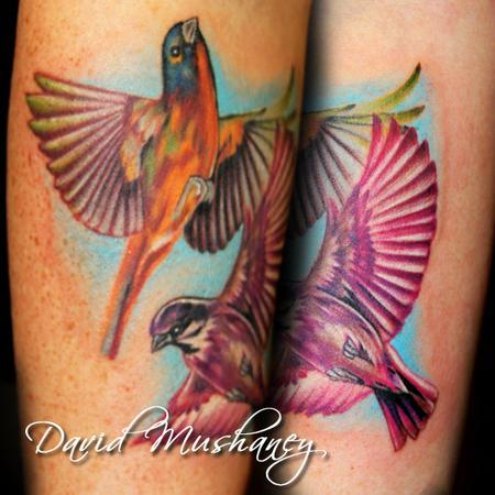David mushaney tattoos tattoos nature realistic for Realistic bird tattoo