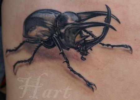 Richard Hart - Realistic Beetle Tattoo