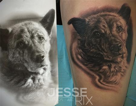 Jesse Rix - Dog Portrait