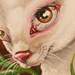 Tattoos - four eyed rabbit - 33159