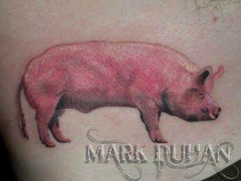 Pig by mark duhan tattoonow for Pig skin tattoo