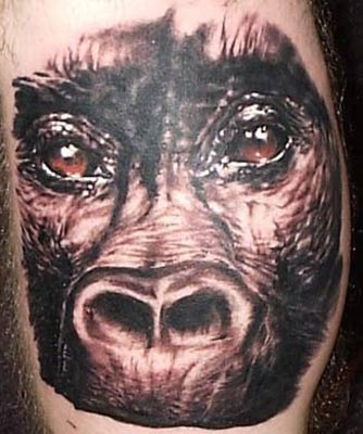 Monkey face on self by dan plumley tattoonow for Monkey face tattoo