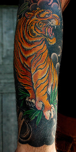 Tiger on rocks by dana helmuth tattoonow for Solid state tattoo