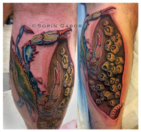 Tattoos - Realistic blue crab tattoo on leg with barnacles on dock and skin rip - 104753