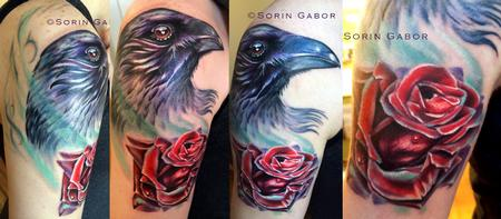 Tattoos - Realistc color raven and rose tattoo on shoulder - 112102